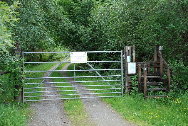 Gate to Upper Sonachan Forest