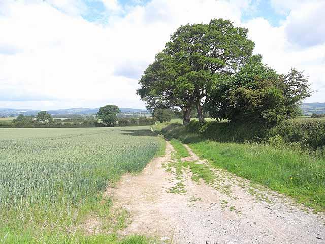 Offa's Dyke Path near Chirbury