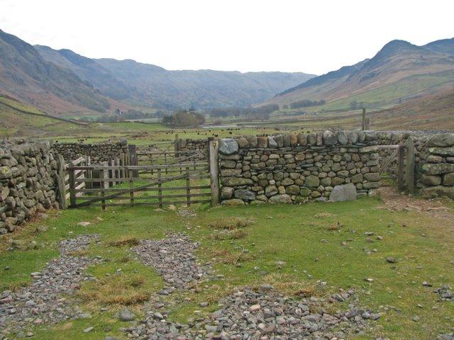 Sheepfold in Oxendale