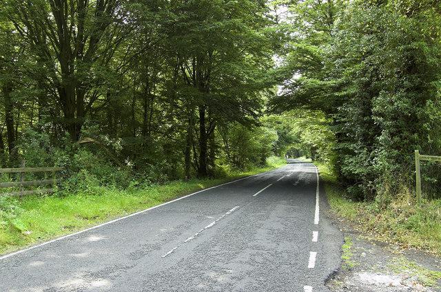 Ripley Road, West Clandon (1)