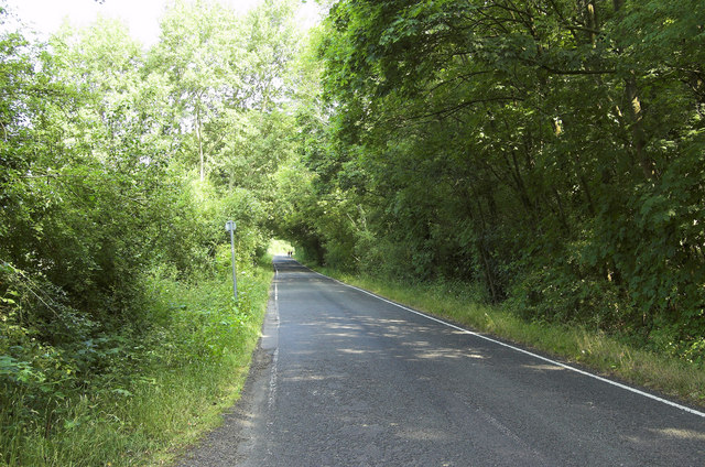 Ripley Road, West Clandon (2)