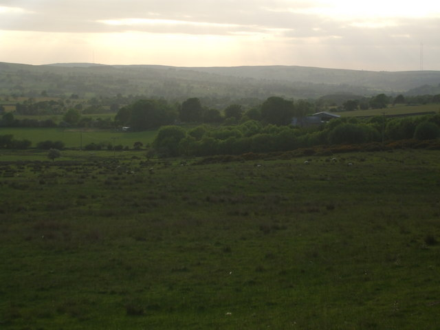 Grazing land towards Newsham