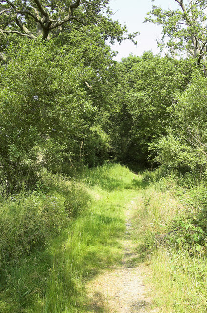 Green Lane, West Clandon