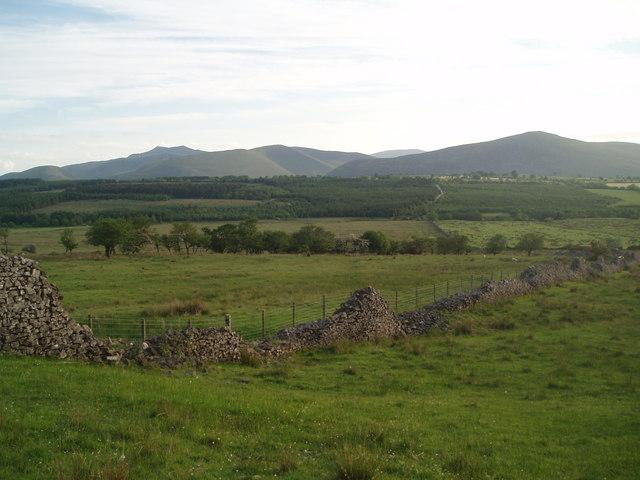 Grazing land towards Gillcambon Beck