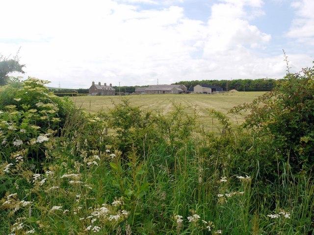 Branxton Moor