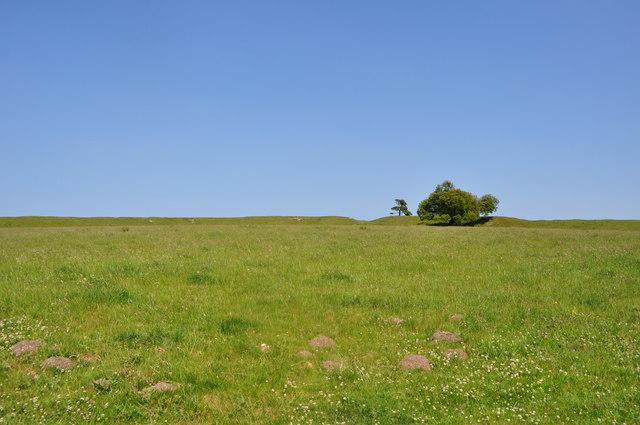Warham Ringed Fort