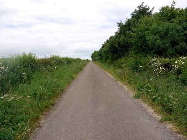 Minor Road to Branxton