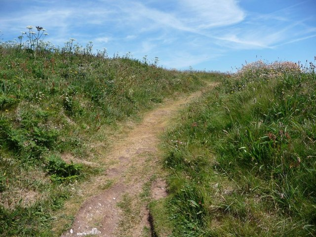 Path to the summit of Burgh Island