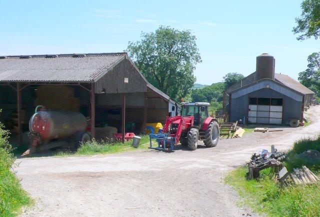 Burl Farm
