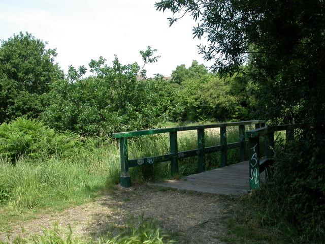 Purewell Meadows, footbridge