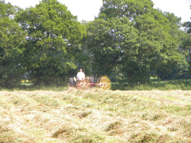 Turning the hay