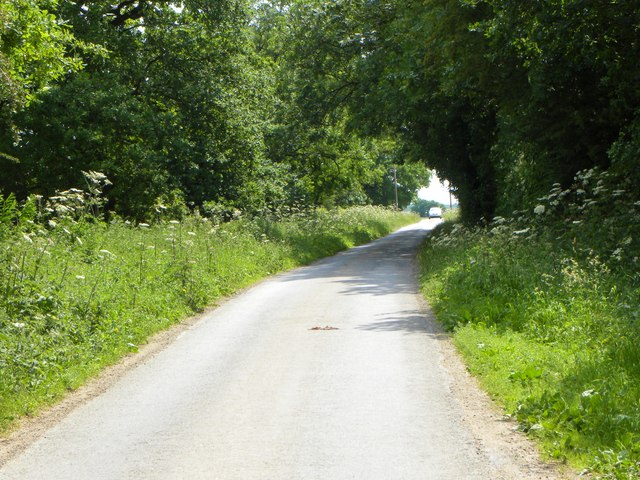 Country lane, Sutton on the Forest