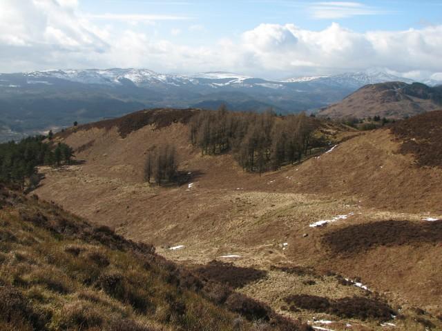 Hillside west of Craig of Monievreckie