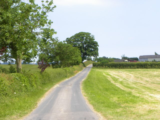 Farm road and bridleway near Stearsby