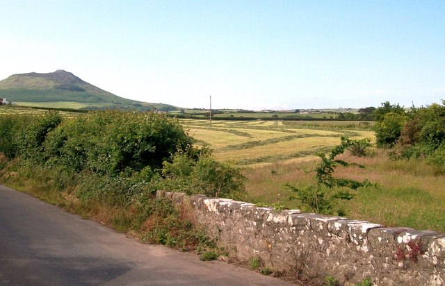 Hayfield southwest of Pont Glan-rhyd