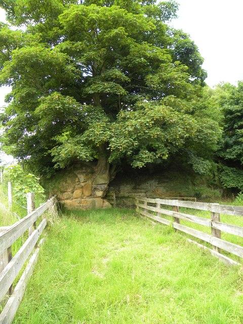 Old quarry, Snargate Hill