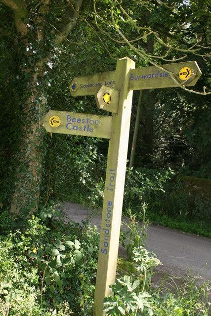The Sandstone Trail at Peckforton, Cheshire