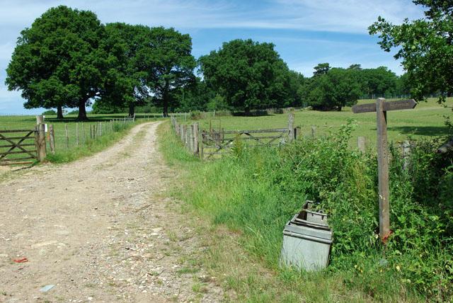 Footpath towards Worth School