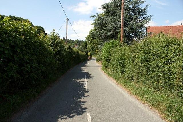 Lane near Beeston, Cheshire