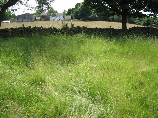 Footpath towards Summerhill Farm