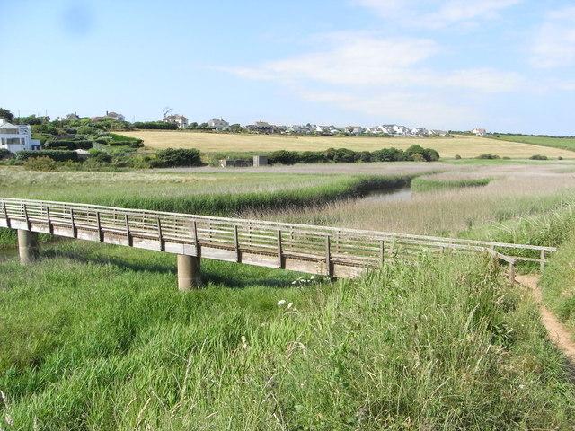 Wetland near Thurlestone