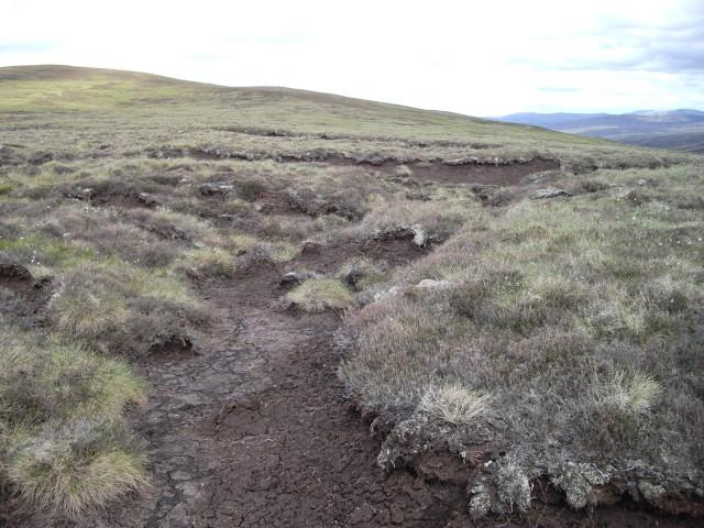 Moorland plateau