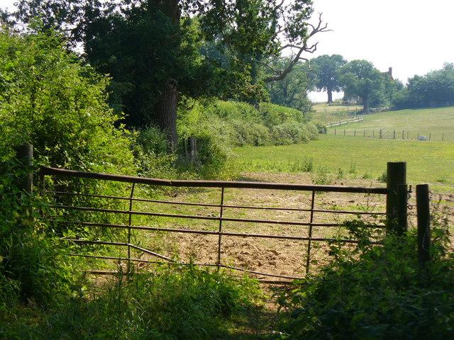 High Billinghurst Farm