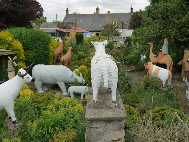 View over The Cement Menagerie, Branxton