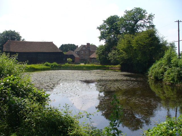 Pond at High Loxley