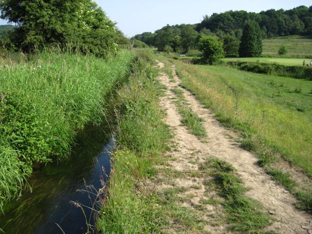 Staffordshire Way footpath
