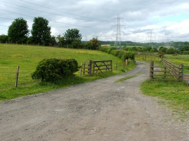 Track from Cuthelton Farm