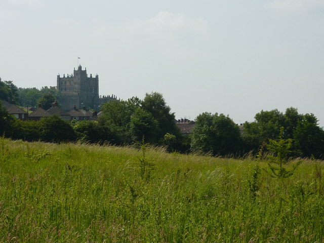Field with houses and Castle