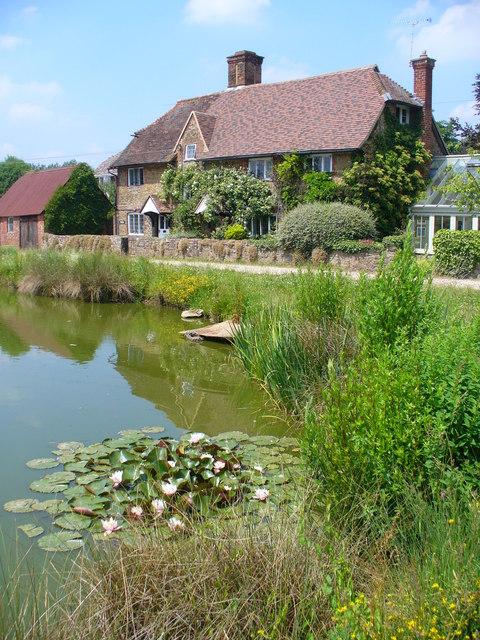Dunsfold Green Pond