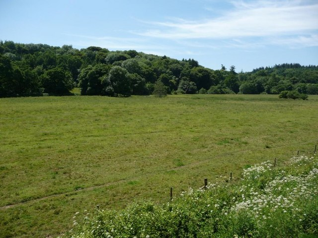 Large meadow between the river and the railway