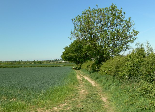 Footpath to Woodhouse Farm