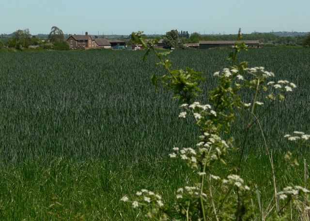 View towards Woodhouse Farm