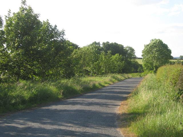 Minor road near Whitelaw Farm in Berwickshire.