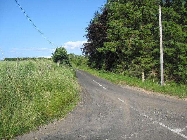 Minor road heading for Reedy Loch