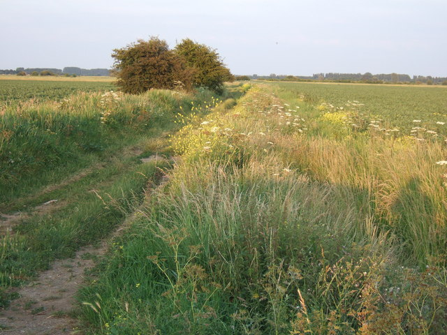 Pulley's Lane