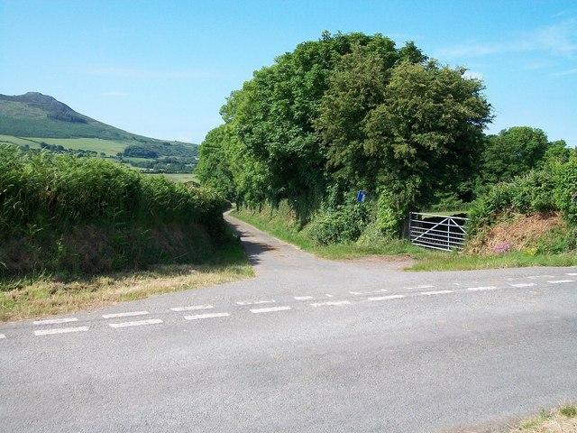 The Brynheulog Farm access road