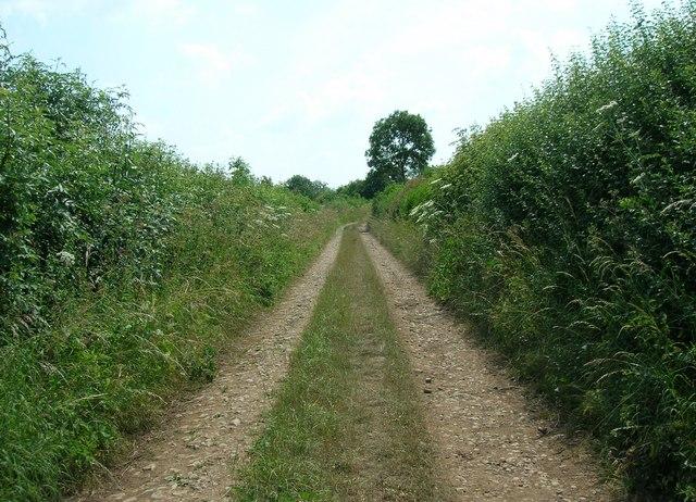 Binces Lane