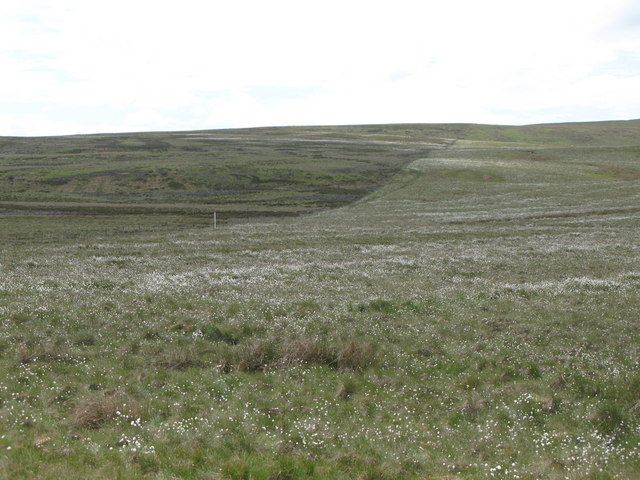 Moorland south of Clattering Causeway (2)