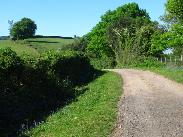 Path to the Folly