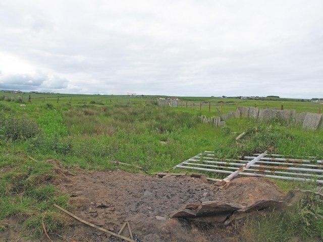 Mill dam at Bleachfield