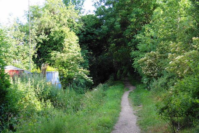 Footpath by Marston Brook