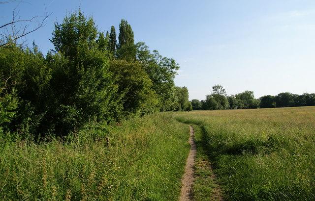 Path by Marston Brook