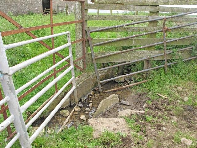 Mill Lade at Bleachfield Farm