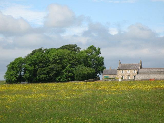 Coldshield Farm