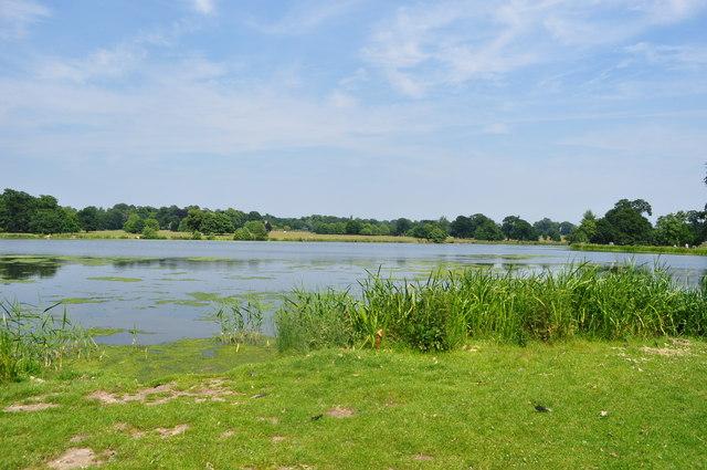 Saw Mill Pond