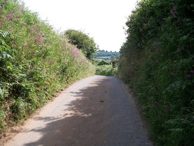 Sunken lane east towards Boduan